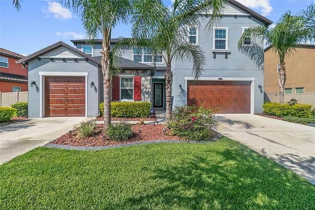 29387 Picana Lane, Wesley Chapel, FL 33543 (MLS #T3304728) :: Premier Home Experts