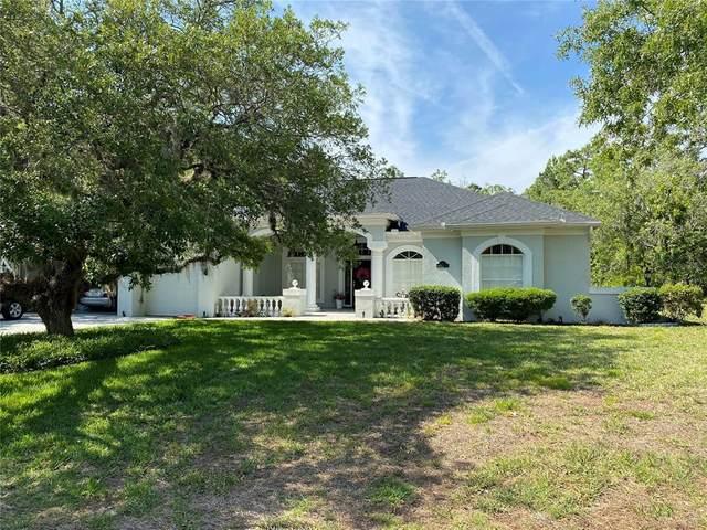 4 Honeysuckle Drive, Homosassa, FL 34446 (MLS #T3304747) :: Armel Real Estate
