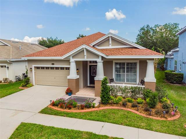 4823 Sky Blue Drive, Lutz, FL 33558 (MLS #T3304748) :: The Hesse Team
