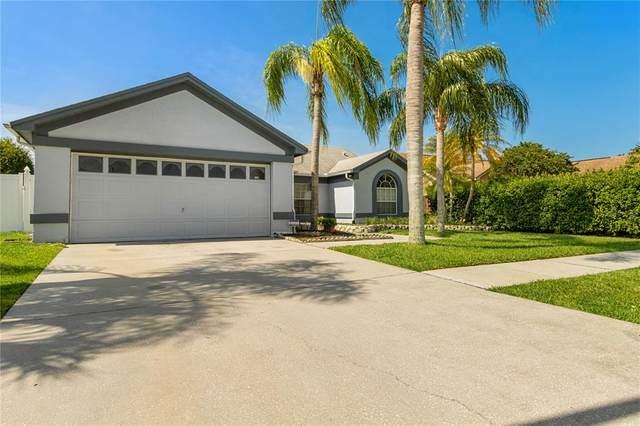 2982 Sumner Way, Palm Harbor, FL 34684 (MLS #T3304752) :: Pepine Realty