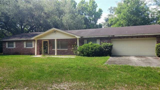 3521 N Wilder Road, Plant City, FL 33565 (MLS #T3304771) :: Premium Properties Real Estate Services