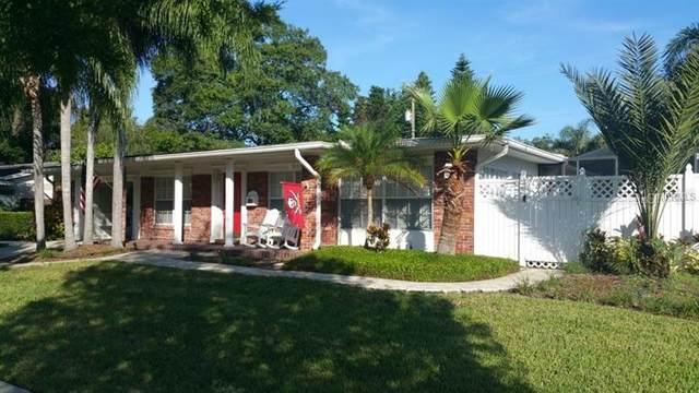 10706 Lake Carroll Way, Tampa, FL 33618 (MLS #T3304780) :: Premier Home Experts