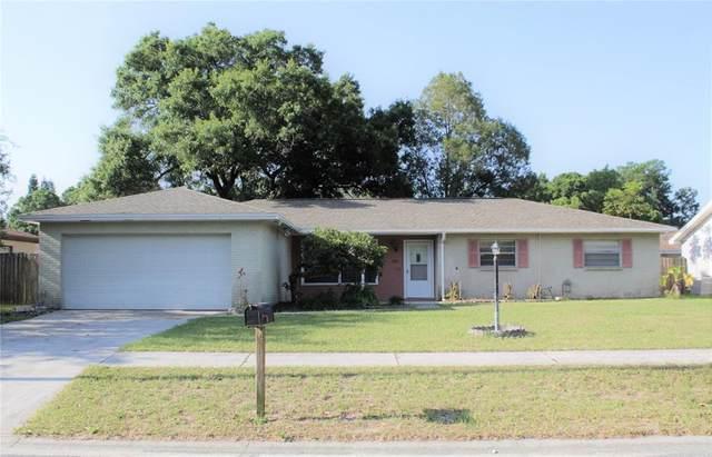 3823 Ravenna Drive, Valrico, FL 33594 (MLS #T3304785) :: Team Bohannon Keller Williams, Tampa Properties