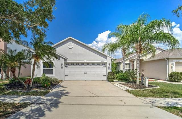 10405 Opus Drive, Riverview, FL 33579 (MLS #T3304803) :: Realty One Group Skyline / The Rose Team