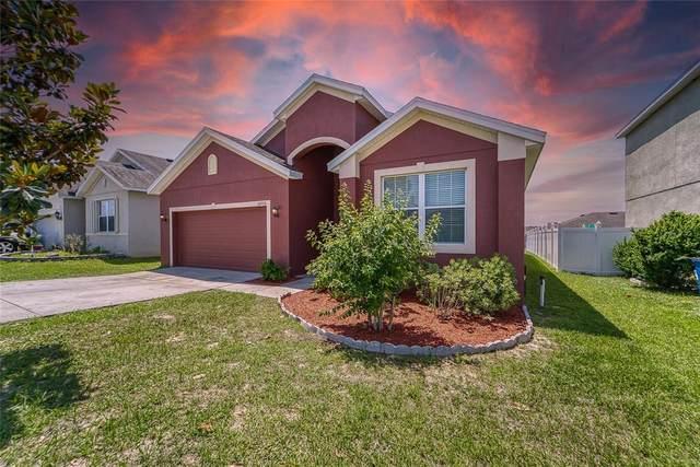 30726 Water Lily Drive, Brooksville, FL 34602 (MLS #T3304816) :: Lockhart & Walseth Team, Realtors