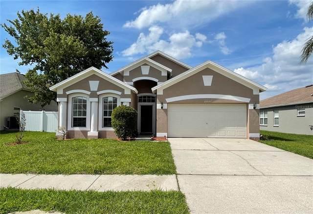22647 Beltrees Court, Land O Lakes, FL 34639 (MLS #T3304856) :: Team Borham at Keller Williams Realty