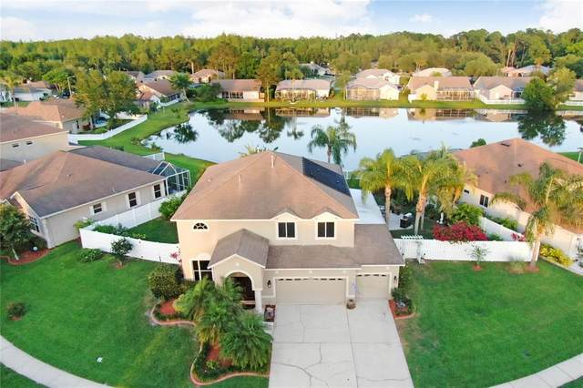 5109 Balsam Drive, Land O Lakes, FL 34639 (MLS #T3304864) :: Pepine Realty