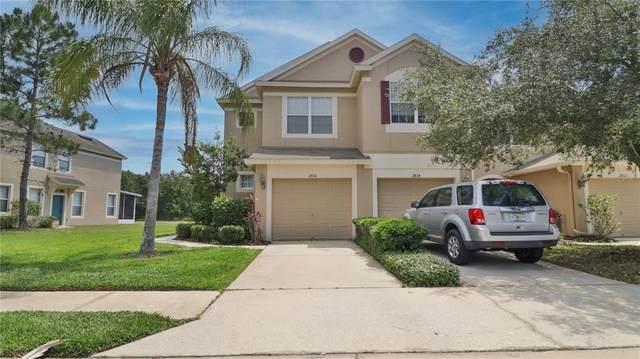 2816 Conch Hollow Drive, Brandon, FL 33511 (MLS #T3304866) :: CGY Realty