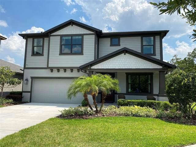 11205 Paddock Manor Avenue, Riverview, FL 33569 (MLS #T3304895) :: Team Borham at Keller Williams Realty
