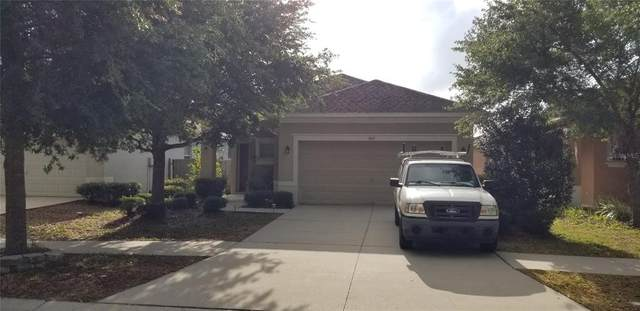 810 College Leaf Way, Ruskin, FL 33570 (MLS #T3304911) :: Team Borham at Keller Williams Realty