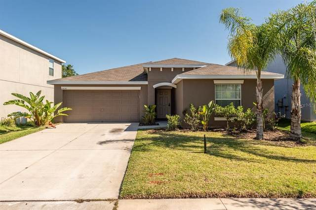10030 Crested Fringe Drive, Riverview, FL 33578 (MLS #T3304912) :: The Heidi Schrock Team