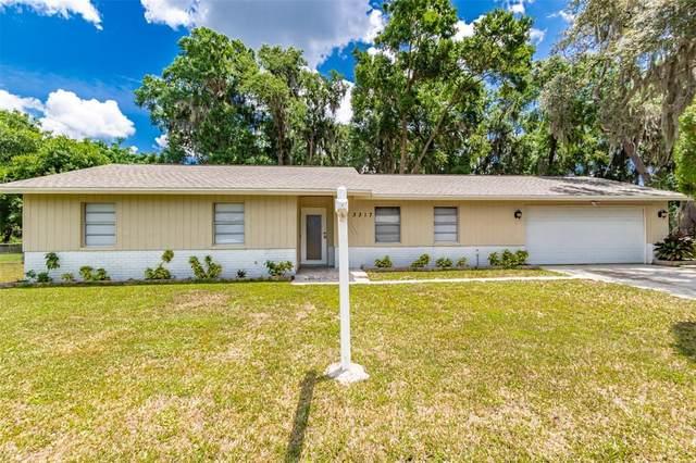 3317 Las Brisas Drive, Riverview, FL 33578 (MLS #T3304925) :: Team Borham at Keller Williams Realty