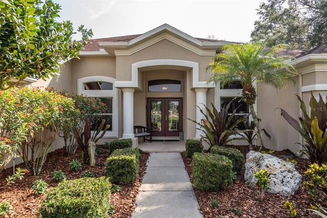2832 Mossy Timber Trail, Valrico, FL 33596 (MLS #T3304933) :: The Robertson Real Estate Group