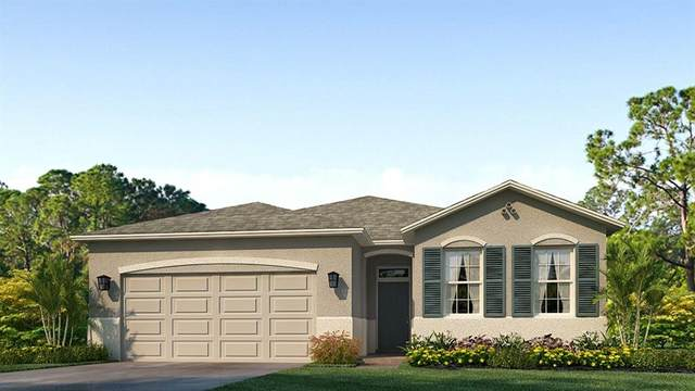 13361 Waterleaf Garden Circle, Riverview, FL 33579 (MLS #T3304936) :: Team Borham at Keller Williams Realty