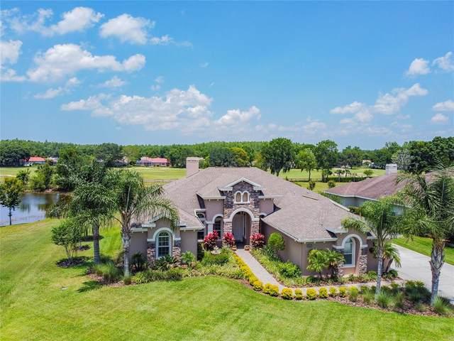 3169 Foxwood Lane, Tarpon Springs, FL 34688 (MLS #T3304938) :: CGY Realty