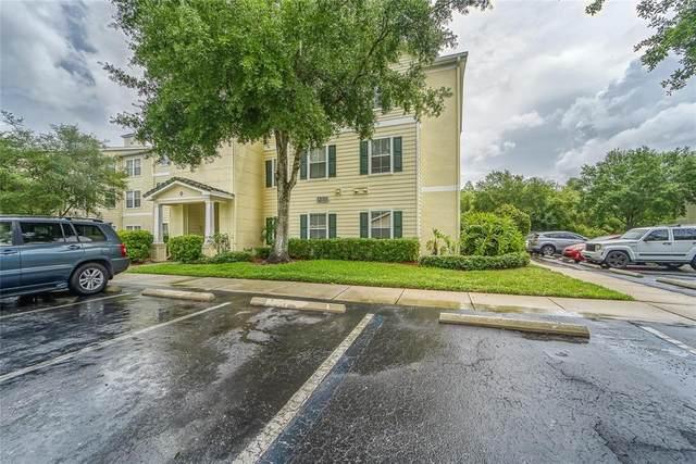 18231 Bridle Club Drive, Tampa, FL 33647 (MLS #T3304952) :: Delgado Home Team at Keller Williams