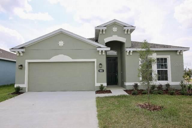 8661 Broadstone Drive, Wesley Chapel, FL 33544 (MLS #T3304980) :: Team Borham at Keller Williams Realty