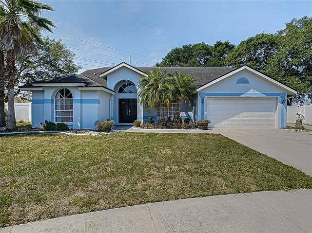 9823 Sunnyoak Drive, Riverview, FL 33569 (MLS #T3304985) :: New Home Partners