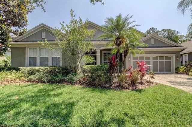 12016 Meridian Point Drive, Tampa, FL 33626 (MLS #T3304988) :: Delgado Home Team at Keller Williams