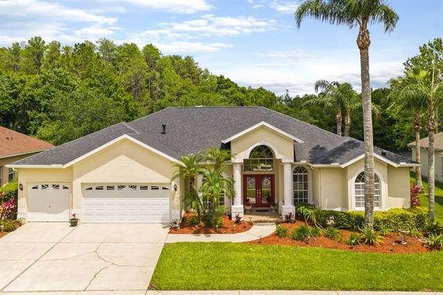 1418 Highwood Place, Wesley Chapel, FL 33543 (MLS #T3304995) :: Team Borham at Keller Williams Realty