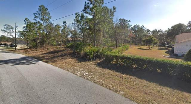 0 Fool Duck Avenue, Weeki Wachee, FL 34613 (MLS #T3305018) :: The Kardosh Team