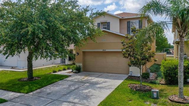 17600 Glenapp Drive, Land O Lakes, FL 34638 (MLS #T3305051) :: Premier Home Experts