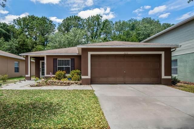 2053 Ashley Lakes Drive, Odessa, FL 33556 (MLS #T3305063) :: Aybar Homes