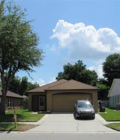 1844 Tinker Drive, Lutz, FL 33559 (MLS #T3305089) :: Team Borham at Keller Williams Realty