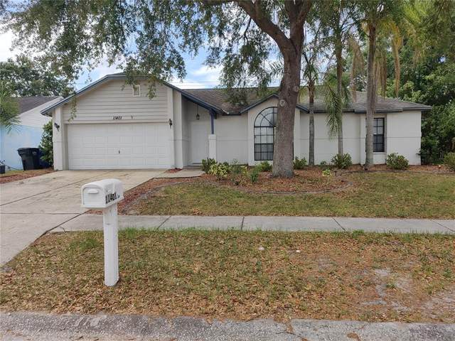 11401 Andy Drive, Riverview, FL 33569 (MLS #T3305098) :: The Paxton Group