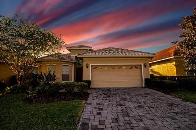 18030 Java Isle Drive, Tampa, FL 33647 (MLS #T3305123) :: Pepine Realty