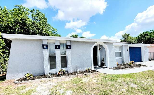 7421 Buchanan Drive, Port Richey, FL 34668 (MLS #T3305138) :: Team Borham at Keller Williams Realty