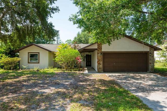 23544 Bellaire Loop, Land O Lakes, FL 34639 (MLS #T3305145) :: Premier Home Experts