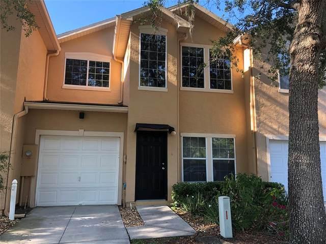 6206 Clifton Palms Drive, Tampa, FL 33647 (MLS #T3305151) :: Armel Real Estate
