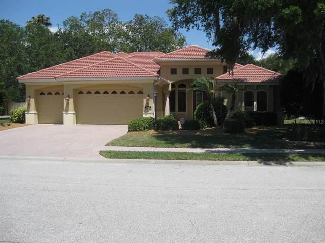 4671 Tuscana Drive, Sarasota, FL 34241 (MLS #T3305155) :: Team Pepka