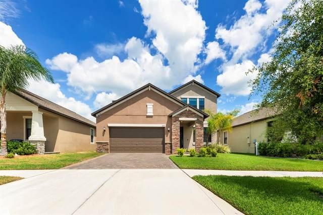 13632 Ashlar Slate Place, Riverview, FL 33579 (MLS #T3305174) :: Premier Home Experts