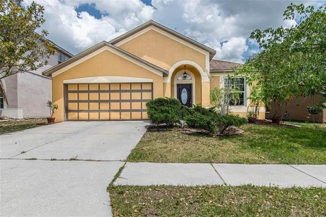 919 Grand Canyon Drive, Valrico, FL 33594 (MLS #T3305214) :: Team Bohannon Keller Williams, Tampa Properties
