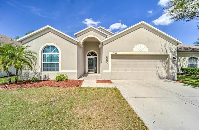 24409 Breezy Oak Court, Lutz, FL 33559 (MLS #T3305240) :: The Nathan Bangs Group