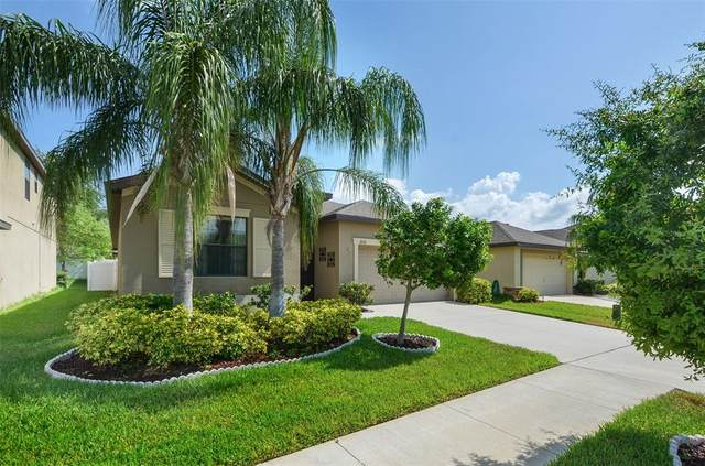 11016 Whittney Chase Drive, Riverview, FL 33579 (MLS #T3305242) :: Pepine Realty