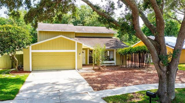 3315 Foxridge Circle, Tampa, FL 33618 (MLS #T3305273) :: The Robertson Real Estate Group