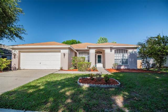 10214 Ashley Oaks Drive, Riverview, FL 33578 (MLS #T3305281) :: Expert Advisors Group