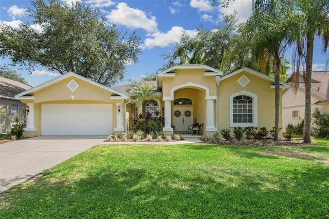 7214 Yardley Way, Tampa, FL 33647 (MLS #T3305306) :: Team Bohannon Keller Williams, Tampa Properties