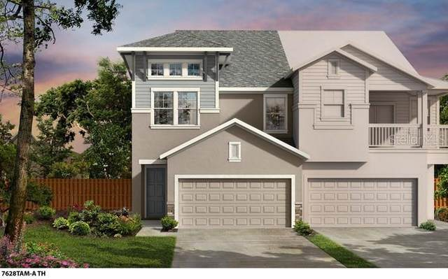 3816 W De Leon Street #1, Tampa, FL 33609 (MLS #T3305313) :: Coldwell Banker Vanguard Realty
