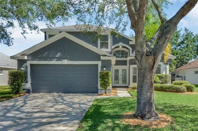 459 Fern Meadow Loop, Ocoee, FL 34761 (MLS #T3305331) :: Bustamante Real Estate