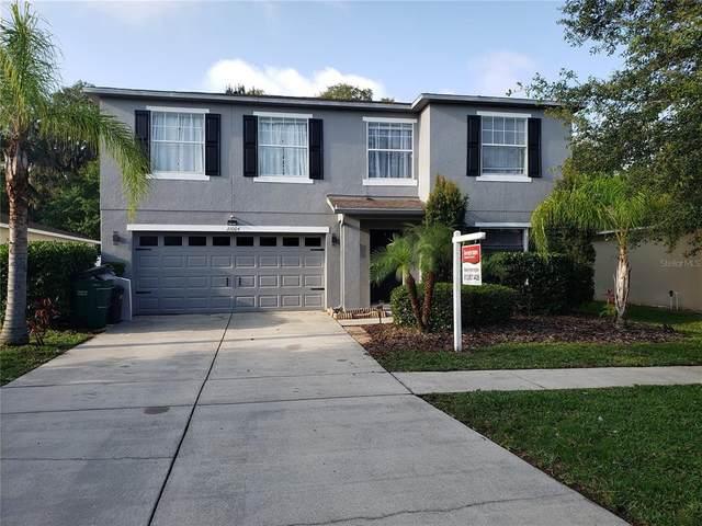 31004 Mandolin Cay Avenue, Wesley Chapel, FL 33543 (MLS #T3305345) :: MavRealty