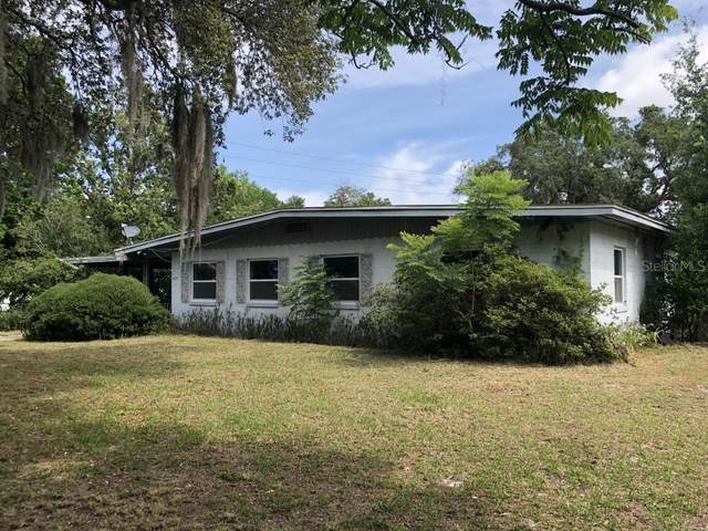 4255 Wee Street, Mount Dora, FL 32757 (MLS #T3305351) :: The Robertson Real Estate Group