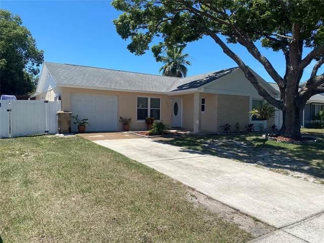 7536 7536 HUMBOLDT AVE, New Port Richey, FL 34655 (MLS #T3305359) :: GO Realty