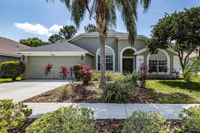 18212 Sweet Jasmine Drive, Tampa, FL 33647 (MLS #T3305370) :: Team Bohannon Keller Williams, Tampa Properties