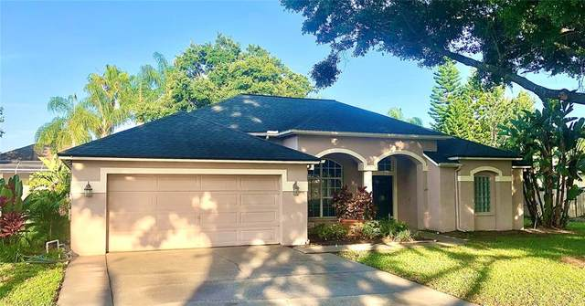 17325 Hubers Court, Odessa, FL 33556 (MLS #T3305373) :: The Nathan Bangs Group
