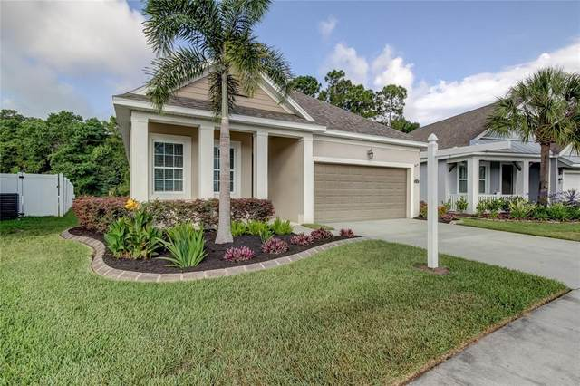 11508 Quiet Forest Drive, Tampa, FL 33635 (MLS #T3305383) :: Realty One Group Skyline / The Rose Team