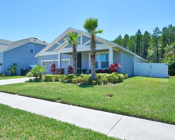14558 Trails Edge Boulevard, Odessa, FL 33556 (MLS #T3305384) :: The Heidi Schrock Team